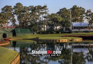 Sawgrass TPC Golf Hole  17 Tournament Players Club  8x10-48x36 Photo Print 1220