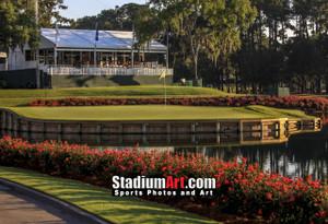 Sawgrass TPC Golf Hole  17 Tournament Players Club  8x10-48x36 Photo Print 1270