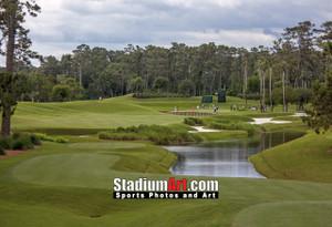 Sawgrass TPC Golf Hole 4 Tournament Players Club  8x10-48x36 Photo Print 1360