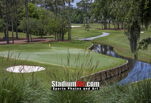Sawgrass TPC Golf Hole 4 Tournament Players Club  8x10-48x36 Photo Print 1390