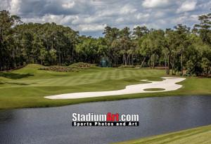 Sawgrass TPC Golf Hole 12 Tournament Players Club  8x10-48x36 Photo Print 1560