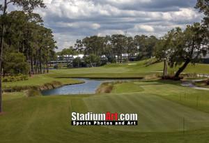Sawgrass TPC Golf Hole 16 Tournament Players Club  8x10-48x36 Photo Print 1590