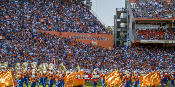 Florida Gators Ben Hill Griffin Stadium Steve Spurrier Field The Swamp Football Photo Print 40 8x10-48x36