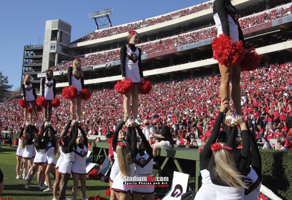 Georgia Bulldogs Sanford Stadium Football Field Photo Print 31 8x10-48x36
