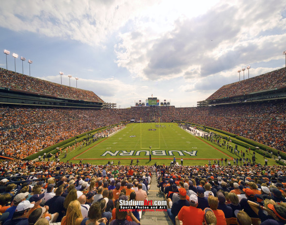 Auburn Tigers Jordan Hare Football Stadium Photo 8x10-48x36 Print 06