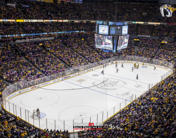 Nashville Predators Bridgestone Arena Hockey Photo Art Print 8x10 or 11x14 or 40x30  StadiumArt.com Sports Photos