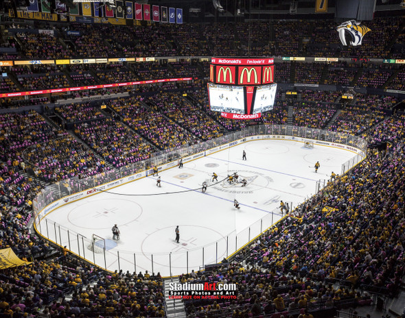 Nashville Predators Bridgestone Arena Hockey Photo Art Print 8x10 or 11x14 or 40x30