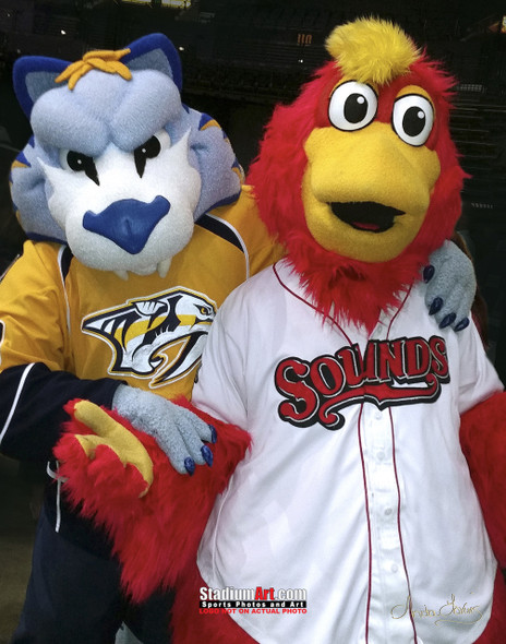 Nashville Sounds Minor League Baseball Booster Mascot 8x10-48x36 Photo Print 51