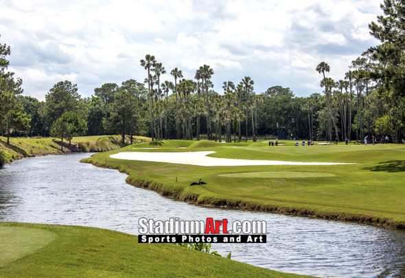Sawgrass TPC Golf Hole 6 Tournament Players Club  8x10-48x36 Photo Print 1410