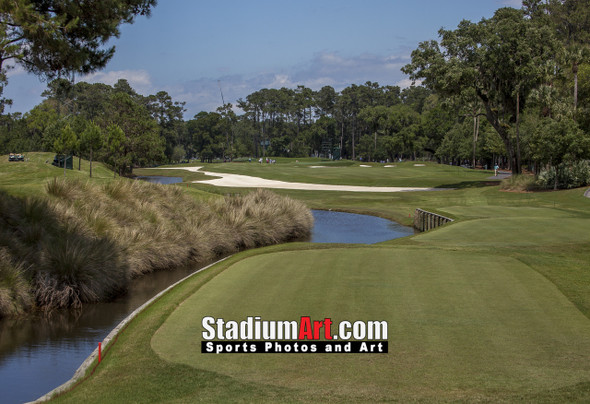 Sawgrass TPC Golf Hole 7 Tournament Players Club  8x10-48x36 Photo Print 1440