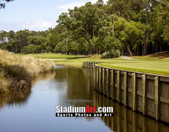 Sawgrass TPC Golf Hole 7 Tournament Players Club  8x10-48x36 Photo Print 1450
