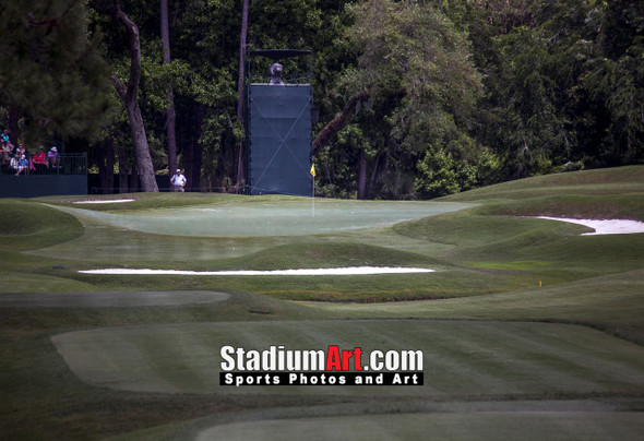 Sawgrass TPC Golf Hole 8 Tournament Players Club  8x10-48x36 Photo Print 1490