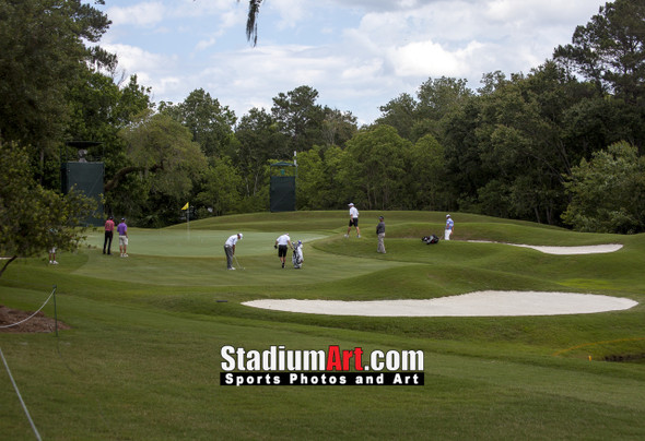 Sawgrass TPC Golf Hole 8 Tournament Players Club  8x10-48x36 Photo Print 1500