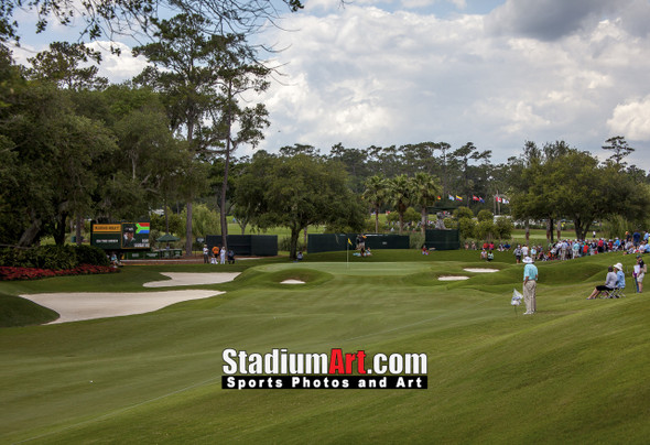 Sawgrass TPC Golf Hole 9 Tournament Players Club  8x10-48x36 Photo Print 1510