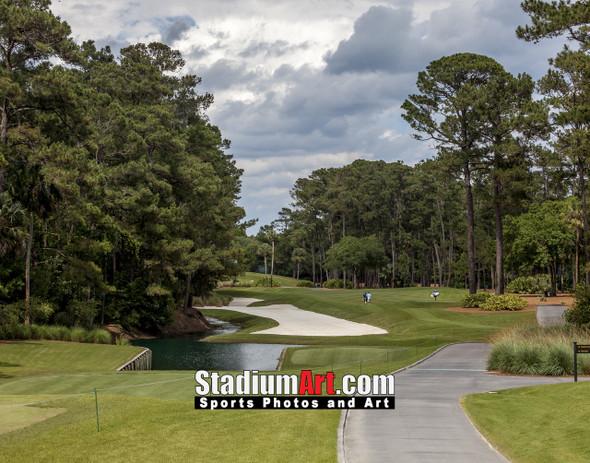 Sawgrass TPC Golf Hole 10 Tournament Players Club  8x10-48x36 Photo Print 1520