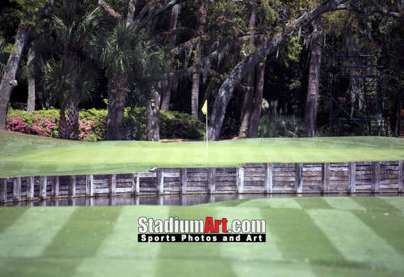 Harbour Town Golf Links at The Sea Pines Resort Golf Hole  8x10-48x36 Photo Print 1645
