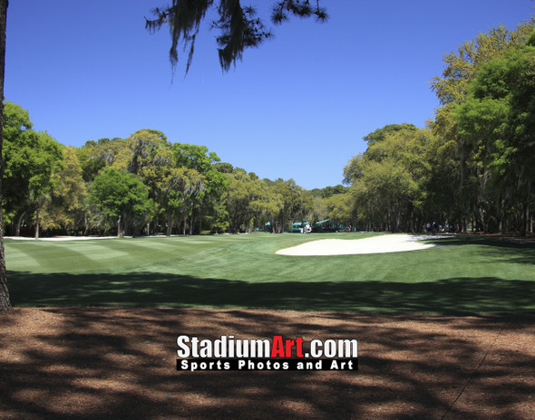 Harbour Town Golf Links at The Sea Pines Resort Golf Hole  8x10-48x36 Photo Print 1665
