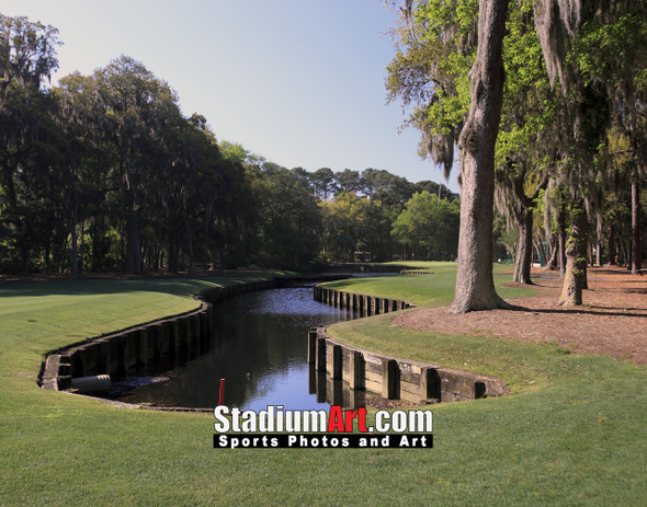 Harbour Town Golf Links at The Sea Pines Resort Golf Hole  8x10-48x36 Photo Print 1725