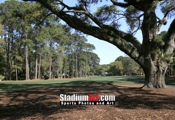 Harbour Town Golf Links at The Sea Pines Resort Golf Hole  8x10-48x36 Photo Print 1740