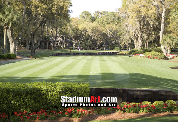 Harbour Town Golf Links at The Sea Pines Resort Golf Hole  8x10-48x36 Photo Print 1760