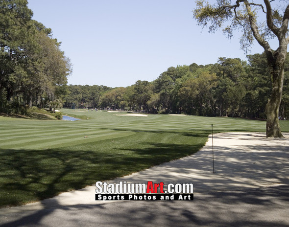 Harbour Town Golf Links at The Sea Pines Resort Golf Hole  8x10-48x36 Photo Print 1780