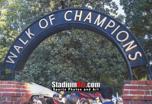 Ole Miss Rebels Mississippi Walk of Champions Grove NCAA College Football 8x10-48x36 Photo Print 5320