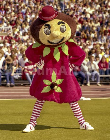 Brutus Mascot Mary Ohio State Buckeyes