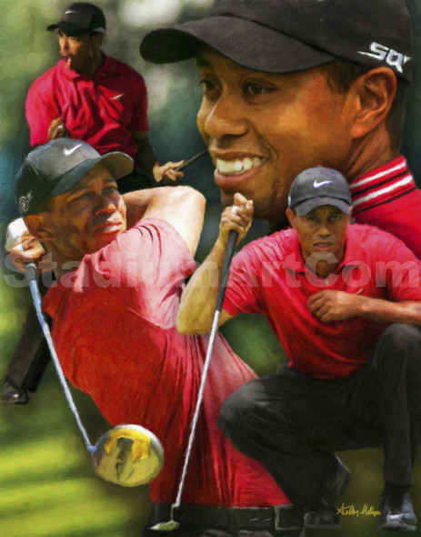 Tiger Woods PGA Pro Golfer