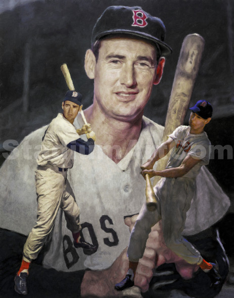 Ted Williams Boston Red Sox MLB Baseball Stadium Field Art Print 2510 8x10-48x36