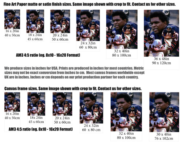 Gale Sayers Chicago Bears Running Back 2510 NFL Football  Art Print 2510 size comparisons for common sizes