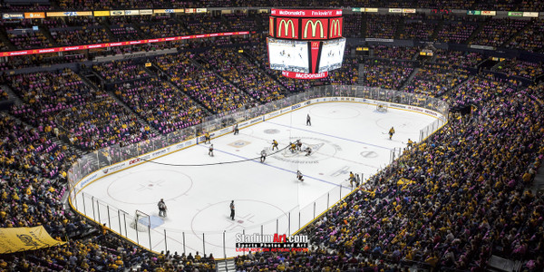 Nashville Predators Bridgestone Arena Hockey Photo Art Print 13x26