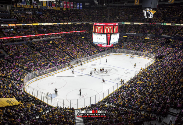 Nashville Predators Bridgestone Arena Hockey Photo Art Print 13x19 or 24x36
