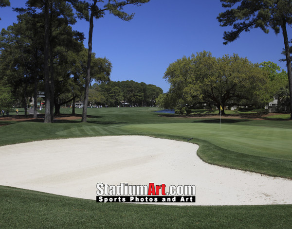 Harbour Town Golf Links at The Sea Pines Resort Golf Hole  8x10-48x36 Photo Print 1600