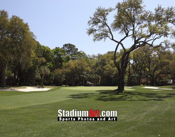 Harbour Town Golf Links at The Sea Pines Resort Golf Hole  8x10-48x36 Photo Print 1610