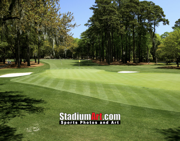 Harbour Town Golf Links at The Sea Pines Resort Golf Hole  8x10-48x36 Photo Print 1620