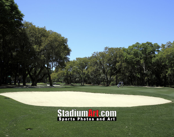 Harbour Town Golf Links at The Sea Pines Resort Golf Hole  8x10-48x36 Photo Print 1625