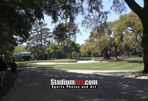 Harbour Town Golf Links at The Sea Pines Resort Golf Hole  8x10-48x36 Photo Print 1630