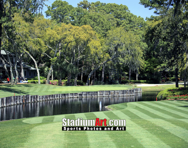 Harbour Town Golf Links at The Sea Pines Resort Golf Hole  8x10-48x36 Photo Print 1650
