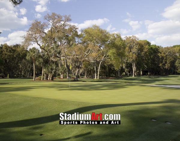 Harbour Town Golf Links at The Sea Pines Resort Golf Hole  8x10-48x36 Photo Print 1765