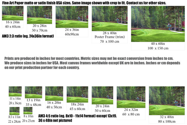 Augusta National Golf Club Masters Tournament Hole 11 White Dogwood golf course oil painting art print 2550 Art Print size comparisons for common sizes