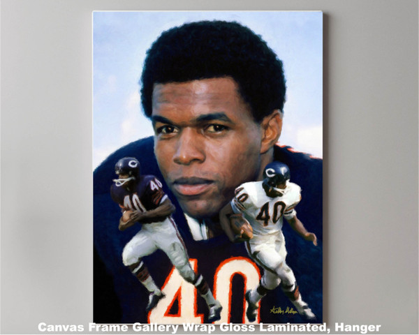 Gale Sayers Chicago Bears Running Back 2520 NFL Football  Art Print 2520 canvas frame gallery wrapped