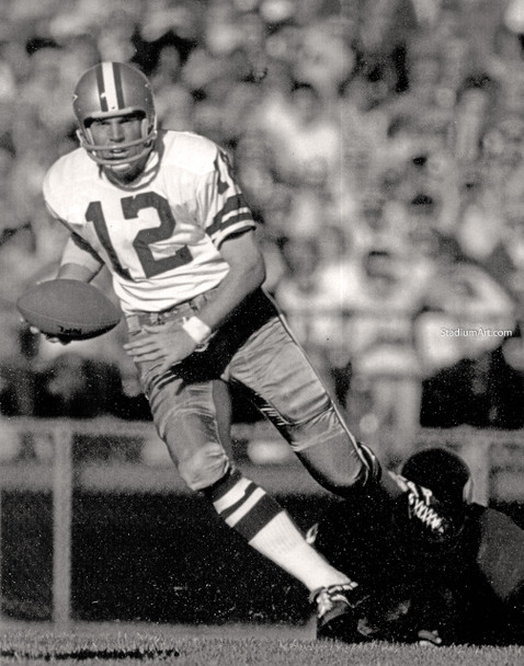 Dallas Cowboys Roger Staubach 52 NFL Football 8x10-48x36 CHOICES