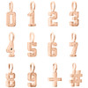 10K Rose Gold Mini Number # Pendant Block Font Charm Hashtag Plus Sign | 0 to 9