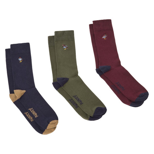 French Partridge Navy Mix Schoffel Mens Combed Cotton Sock (Box Of 3)