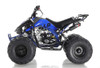 Apollo ATV 125cc Blazer  Fully Automatic transmission