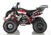 Apollo ATV 125cc Sportrax Fully Automatic transmission