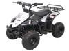 Vitacci 110CC ATV Hawk 6 - Kids Four Wheeler