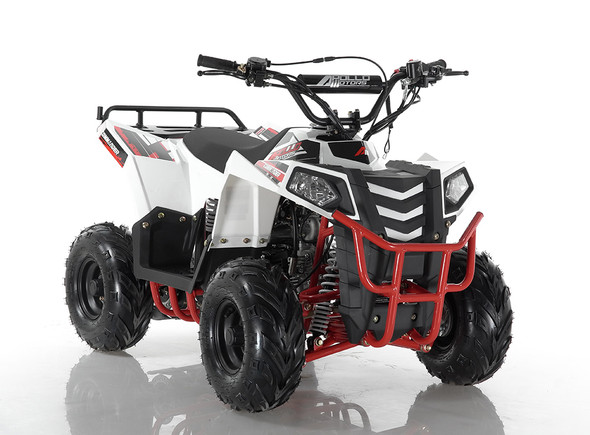 Apollo mini Commander 110cc ATV with Reverse