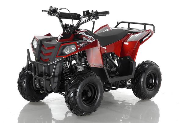 Kids ATV 110cc