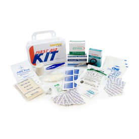 ANSI Compliant Personal First Aid Kit for 10 People - Assorted array of standard ten person first aid equipment.